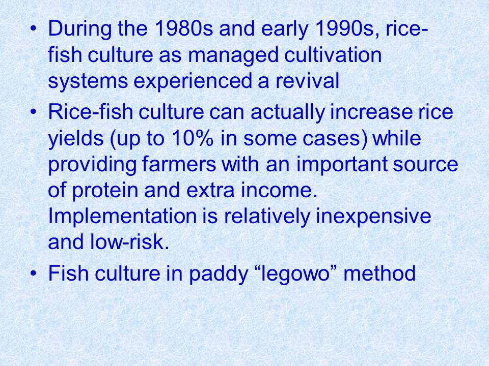 During the 1980s and early 1990s, rice- fish culture as managed cultivation systems experienced a revival Rice-fish culture can actually increase rice yields (up to 10% in some cases) while providing farmers with an important source of protein and extra income.