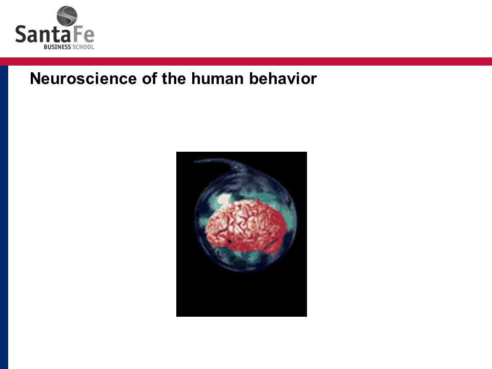 Neuroscience of the human behavior