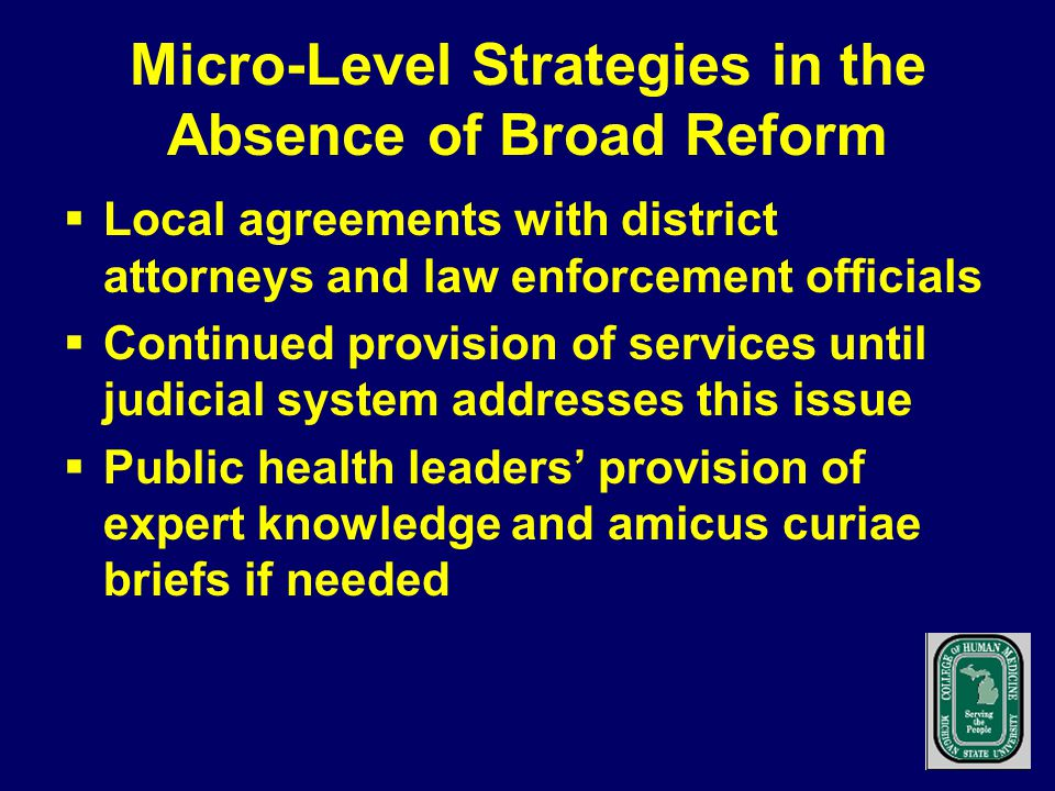 Micro-Level Strategies in the Absence of Broad Reform  Local agreements with district attorneys and law enforcement officials  Continued provision of services until judicial system addresses this issue  Public health leaders' provision of expert knowledge and amicus curiae briefs if needed