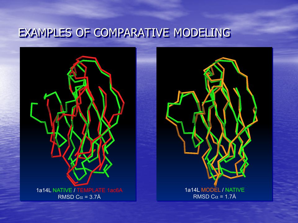EXAMPLES OF COMPARATIVE MODELING