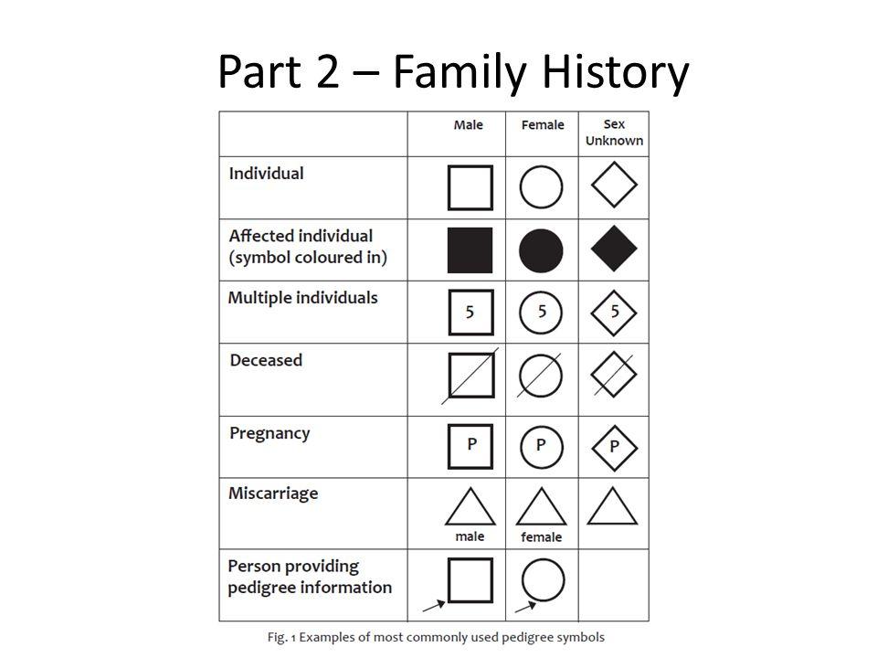 Part 2 – Family History