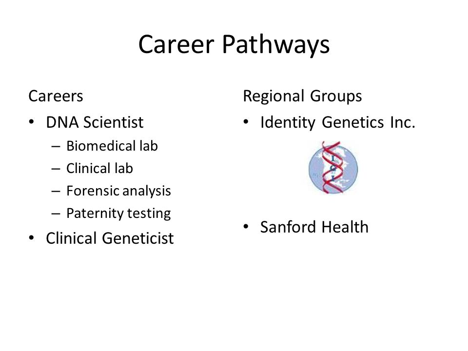 Career Pathways Careers DNA Scientist – Biomedical lab – Clinical lab – Forensic analysis – Paternity testing Clinical Geneticist Regional Groups Iden