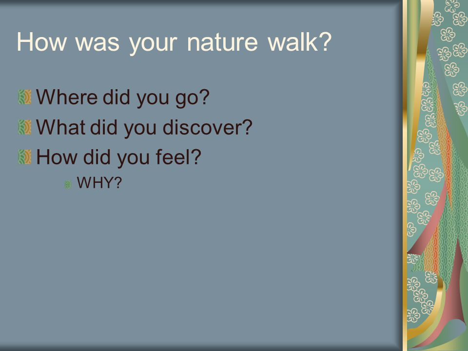How was your nature walk? Where did you go? What did you discover? How did you feel? WHY?