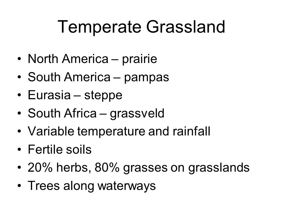 Temperate Grassland North America – prairie South America – pampas Eurasia – steppe South Africa – grassveld Variable temperature and rainfall Fertile
