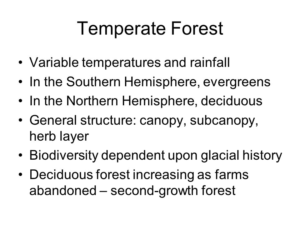 Temperate Forest Variable temperatures and rainfall In the Southern Hemisphere, evergreens In the Northern Hemisphere, deciduous General structure: ca