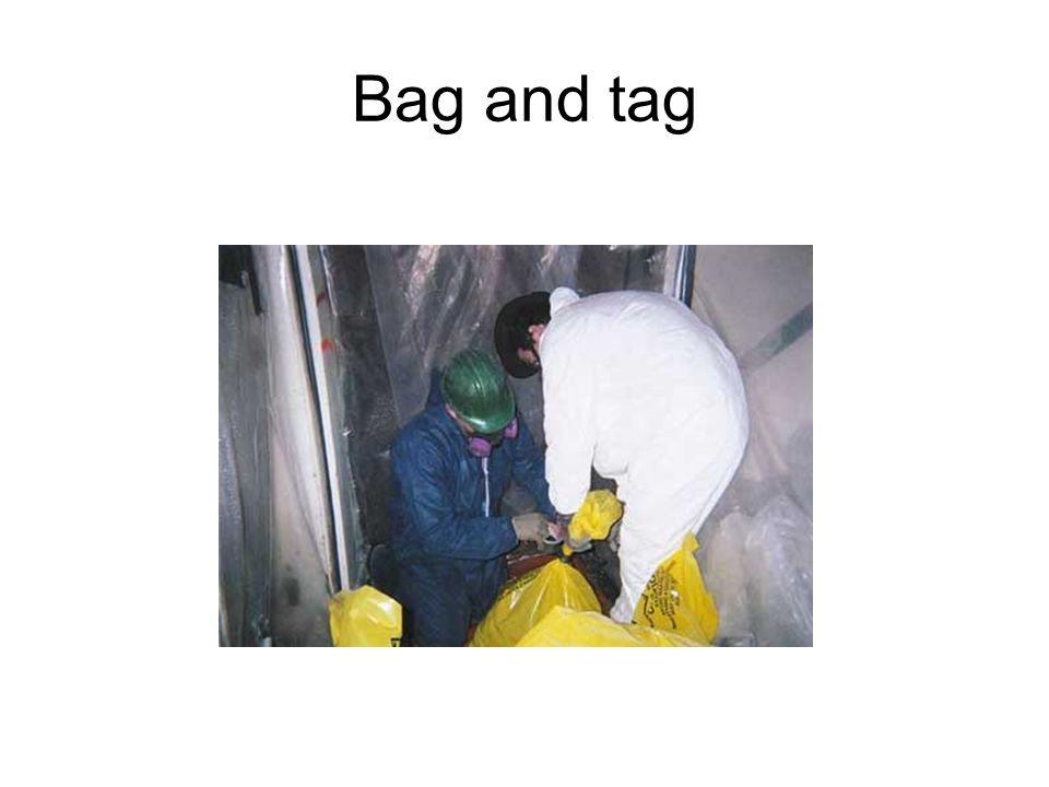 Bag and tag
