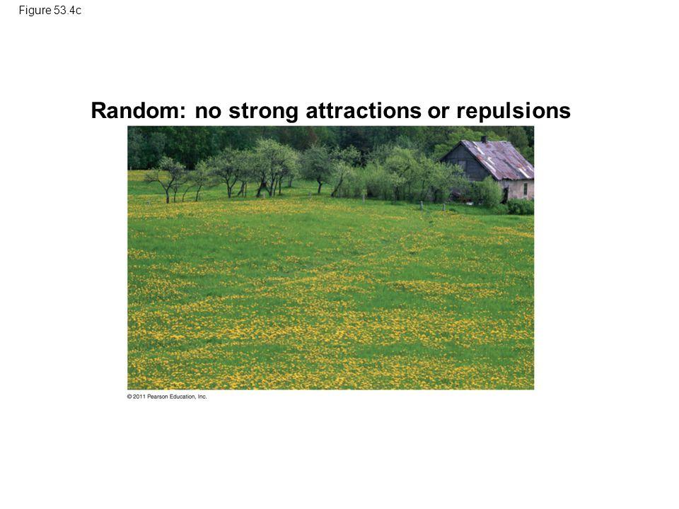 Figure 53.4c Random: no strong attractions or repulsions