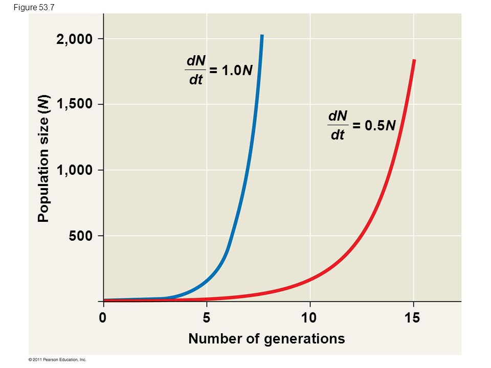 Number of generations Population size (N) 051015 2,000 1,500 1,000 500 dN dt = 1.0N = 0.5N Figure 53.7