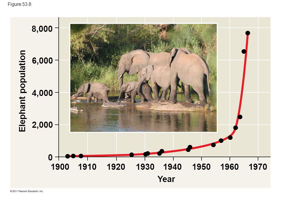 Figure 53.8 Year Elephant population 8,000 6,000 4,000 2,000 0 19001910192019301940195019601970