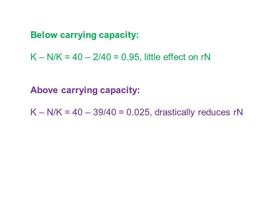 Below carrying capacity: K – N/K = 40 – 2/40 = 0.95, little effect on rN Above carrying capacity: K – N/K = 40 – 39/40 = 0.025, drastically reduces rN