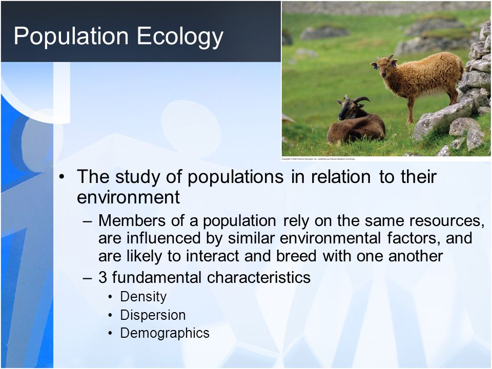 Population Ecology The study of populations in relation to their environment –Members of a population rely on the same resources, are influenced by similar environmental factors, and are likely to interact and breed with one another –3 fundamental characteristics Density Dispersion Demographics