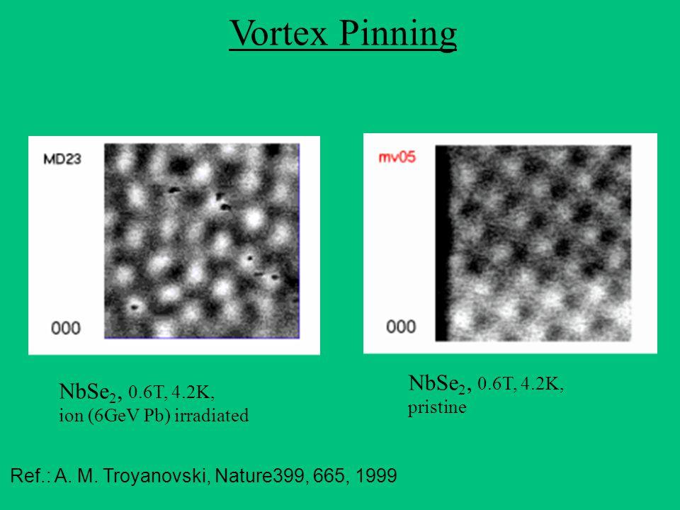 Vortex Pinning Ref.: A. M.