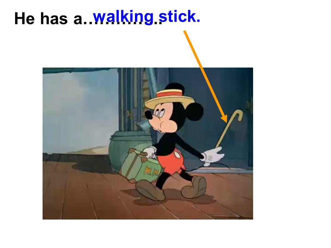 He has a…………... walking stick.