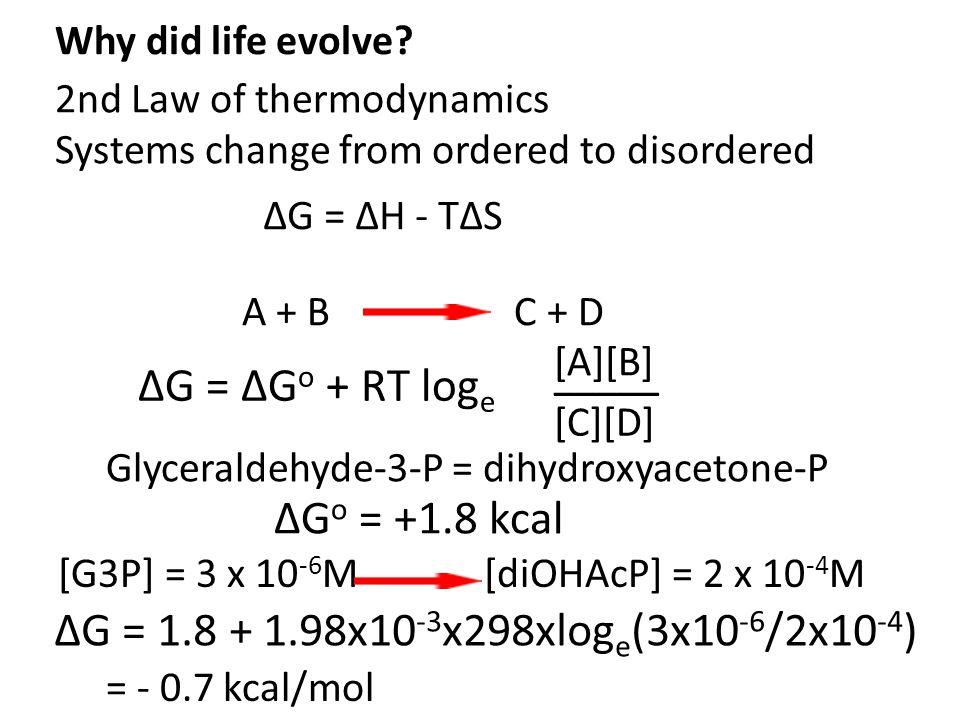 ΔG = ΔG o + RT log e [A][B] [C][D] _____ A + B C + D Glyceraldehyde-3-P = dihydroxyacetone-P ΔG o = +1.8 kcal [G3P] = 3 x 10 -6 M [diOHAcP] = 2 x 10 -4 M ΔG = 1.8 + 1.98x10 -3 x298xlog e (3x10 -6 /2x10 -4 ) = - 0.7 kcal/mol Why did life evolve.