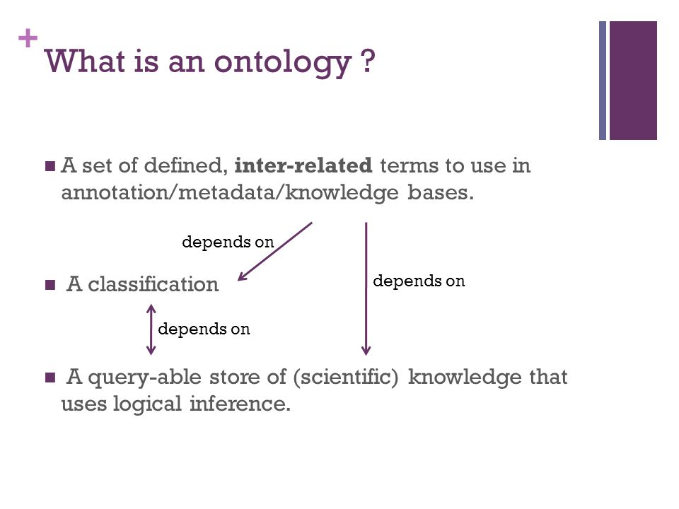 + What is an ontology .