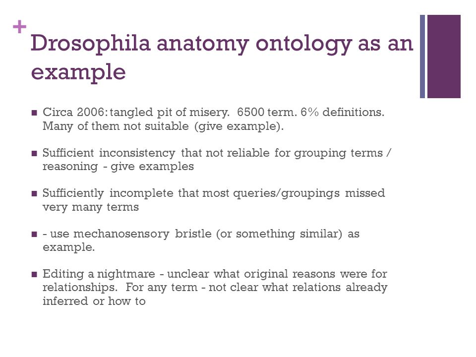 + Drosophila anatomy ontology as an example Circa 2006: tangled pit of misery.