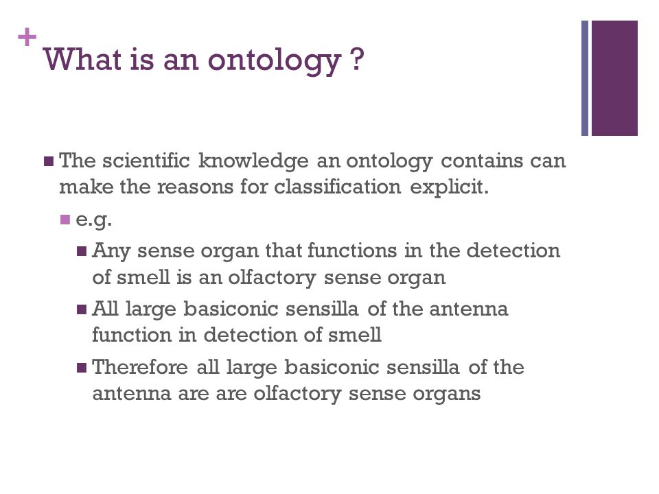 + Resources CARO – upper ontology new version being prepared out soon.