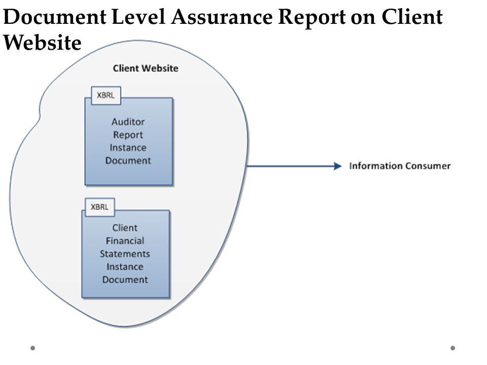 Document Level Assurance Report on Client Website
