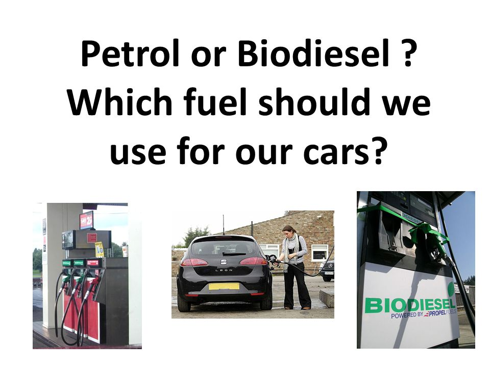 Petrol or Biodiesel Which fuel should we use for our cars