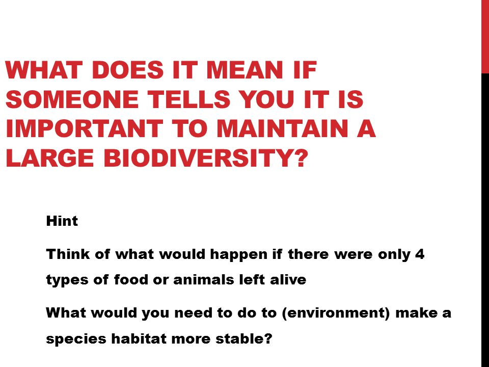 WHAT DOES IT MEAN IF SOMEONE TELLS YOU IT IS IMPORTANT TO MAINTAIN A LARGE BIODIVERSITY.