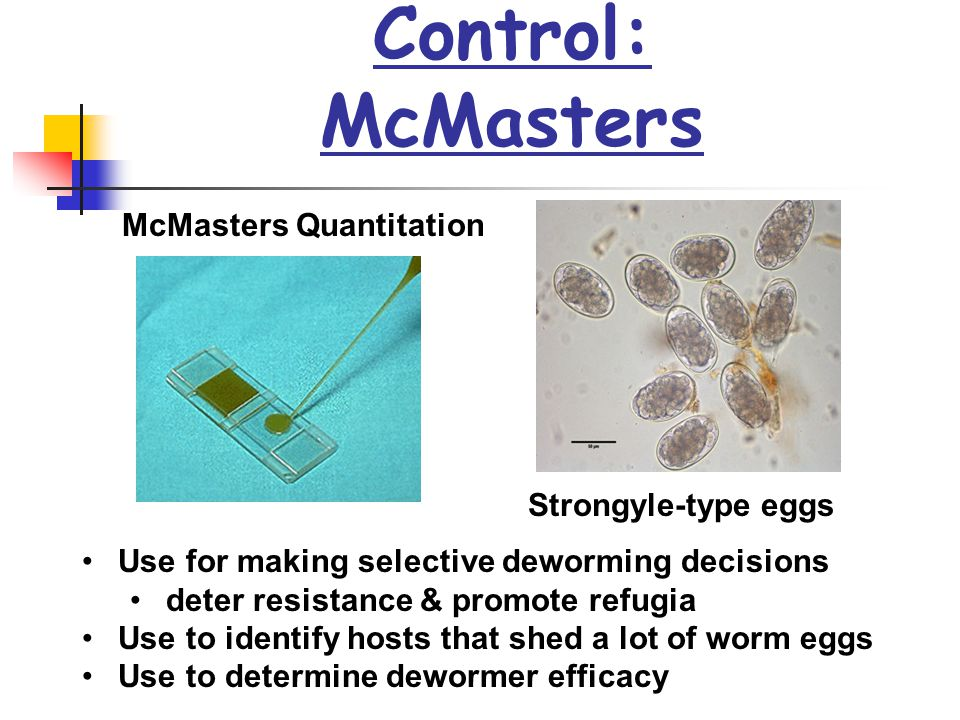 Control: McMasters McMasters Quantitation Strongyle-type eggs Use for making selective deworming decisions deter resistance & promote refugia Use to i