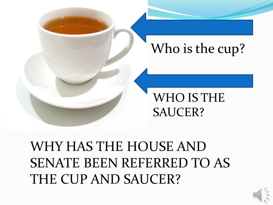 ANSWER THE AIM HOW DOES THE HOUSE AND SENATE DIFFER?