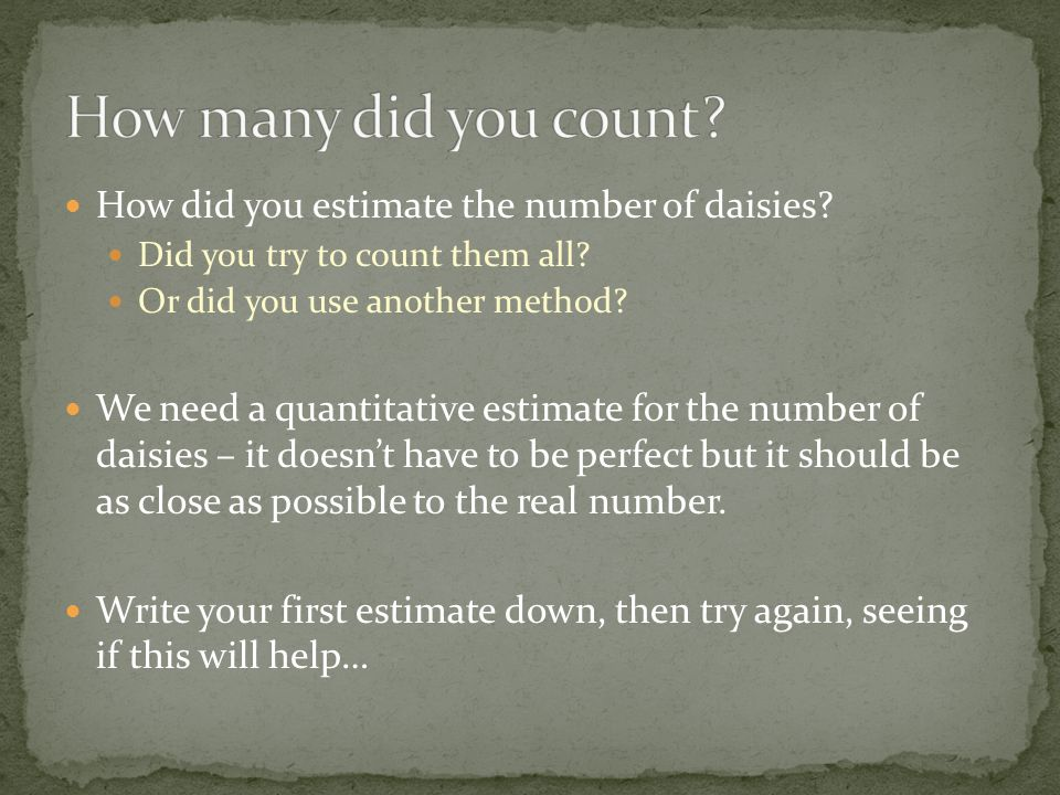 How did you estimate the number of daisies.Did you try to count them all.