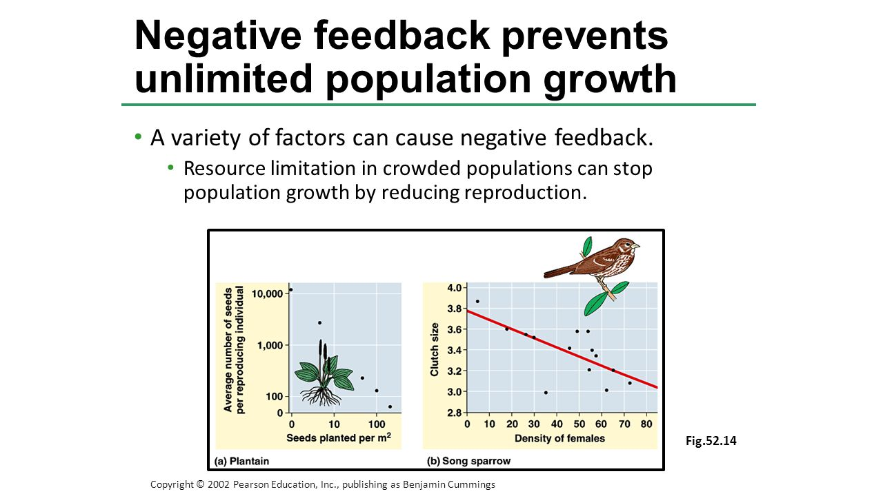 A variety of factors can cause negative feedback. Resource limitation in crowded populations can stop population growth by reducing reproduction. Nega