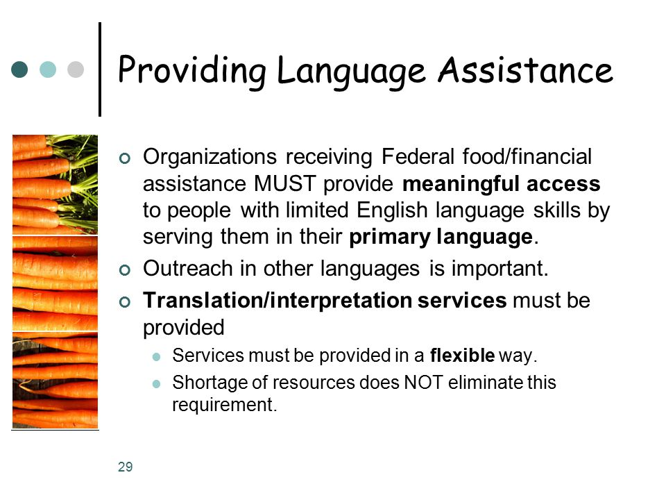 29 Providing Language Assistance Organizations receiving Federal food/financial assistance MUST provide meaningful access to people with limited English language skills by serving them in their primary language.