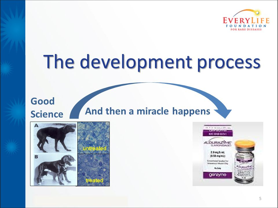5 The development process untreated treated And then a miracle happens Good Science