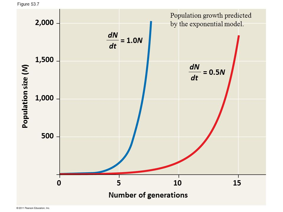 Number of generations Population size (N) 051015 2,000 1,500 1,000 500 dN dt = 1.0N = 0.5N Figure 53.7 Population growth predicted by the exponential