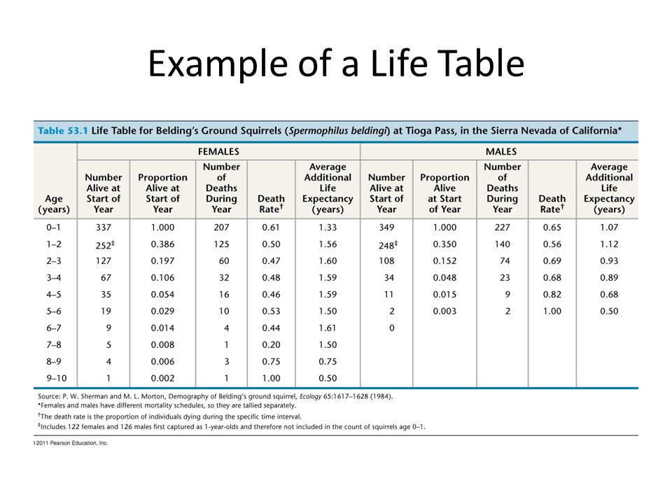 Example of a Life Table