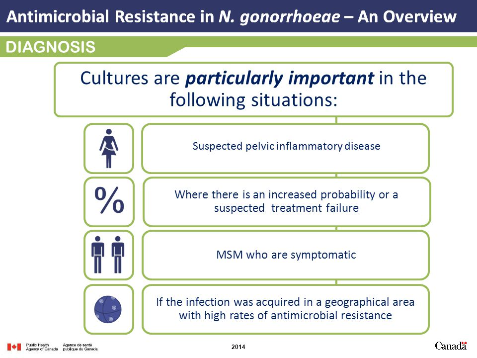 2014 DIAGNOSIS Cultures are particularly important in the following situations: Where there is an increased probability or a suspected treatment failure If the infection was acquired in a geographical area with high rates of antimicrobial resistance MSM who are symptomatic Antimicrobial Resistance in N.