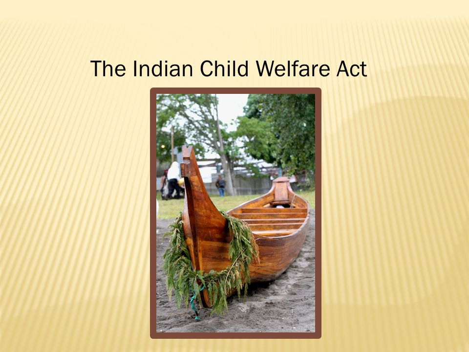 BIA Guidelines for State Courts; Indian Child Custody Proceedings