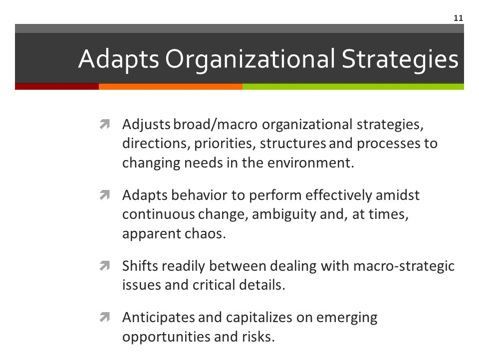 Adapts Organizational Strategies  Adjusts broad/macro organizational strategies, directions, priorities, structures and processes to changing needs in the environment.