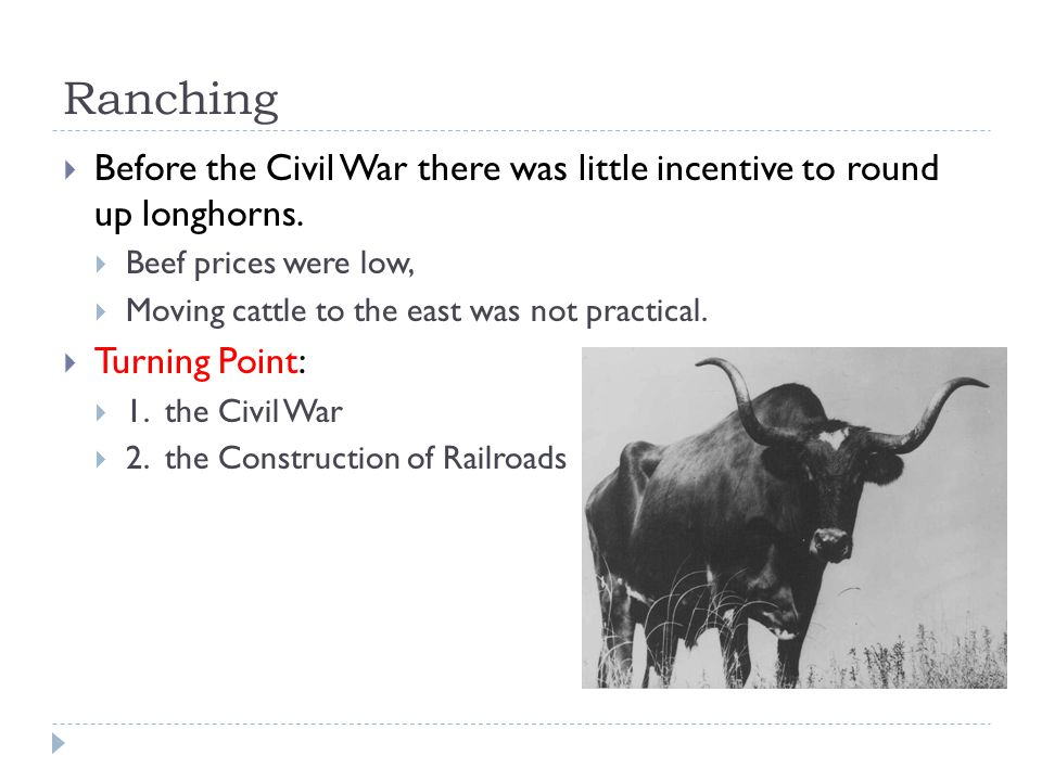 Ranching  The Civil War  After the war, beef prices soared, making it worthwhile.