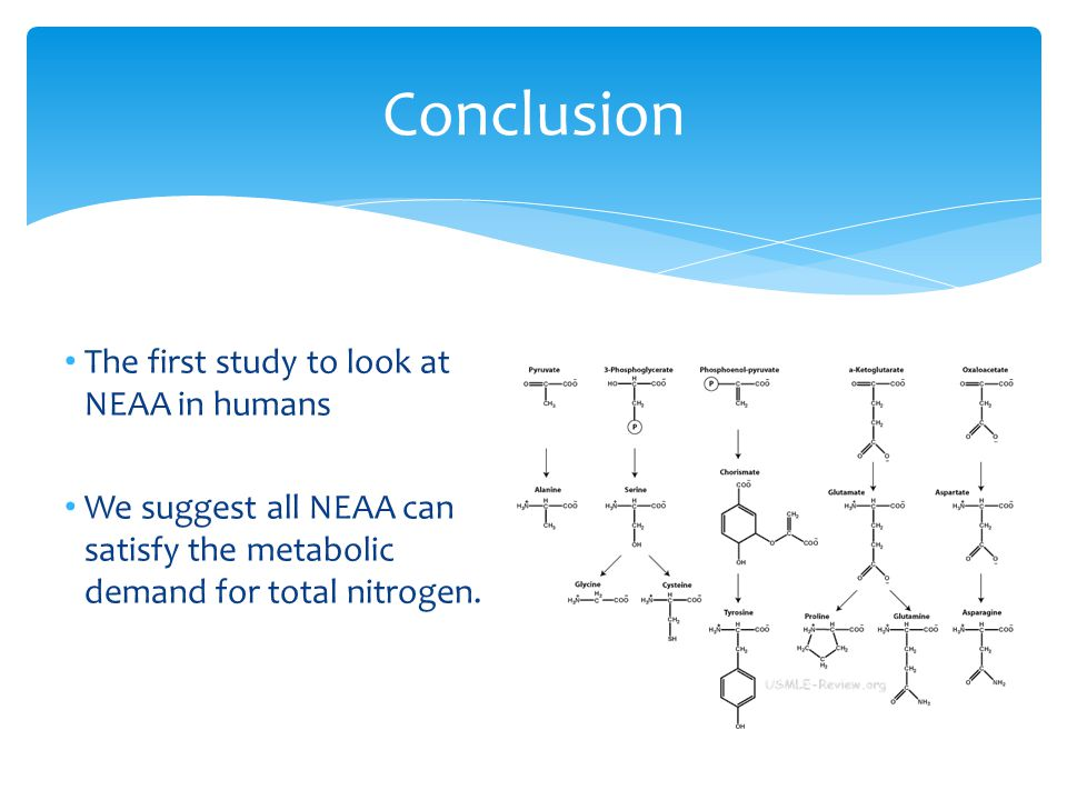 The first study to look at NEAA in humans We suggest all NEAA can satisfy the metabolic demand for total nitrogen.