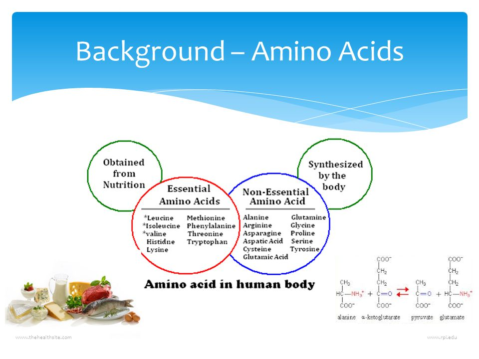 Background – Amino Acids www.thehealthsite.comwww.rpi.edu