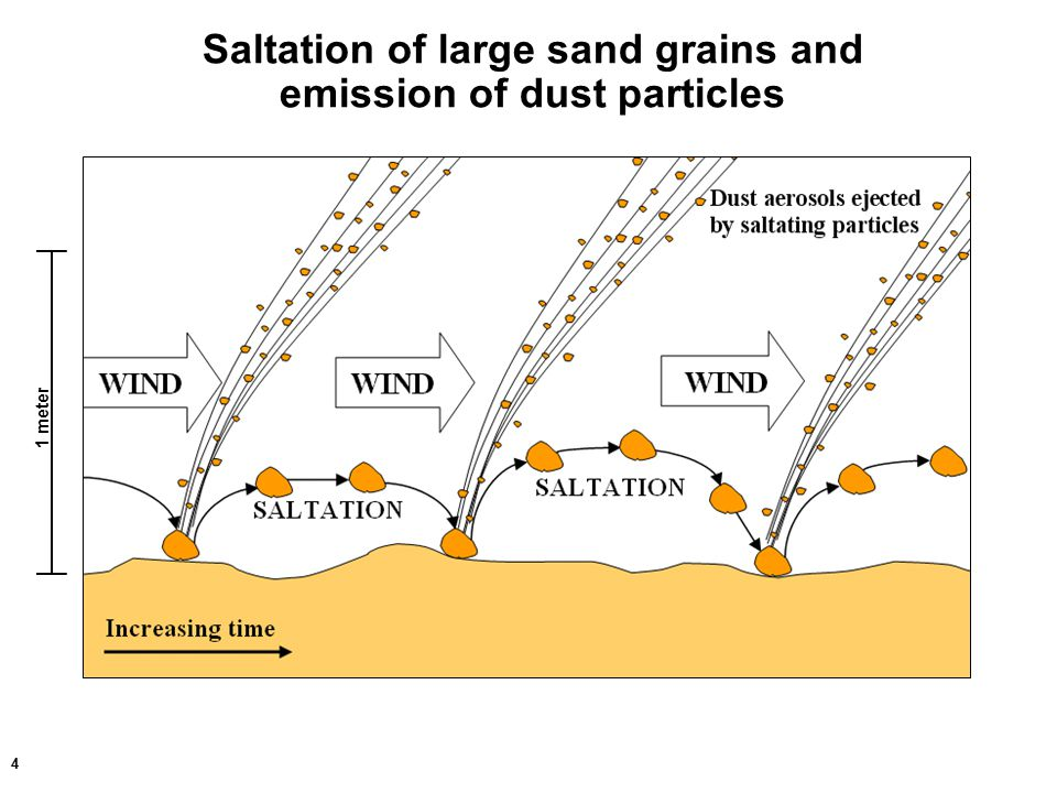4 Saltation of large sand grains and emission of dust particles 1 meter