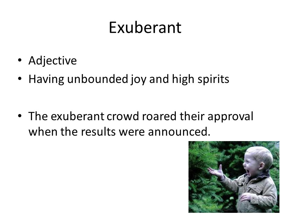 Exuberant Adjective Having unbounded joy and high spirits The exuberant crowd roared their approval when the results were announced.