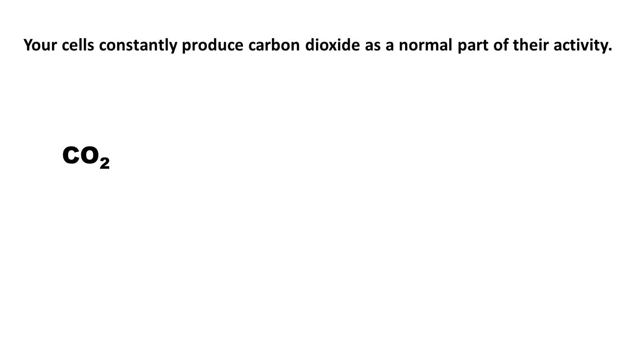 CO 2 + H 2 O H 2 CO 3 H 2 CO 3 CO 2 + H 2 O Your cells constantly produce carbon dioxide as a normal part of their activity.