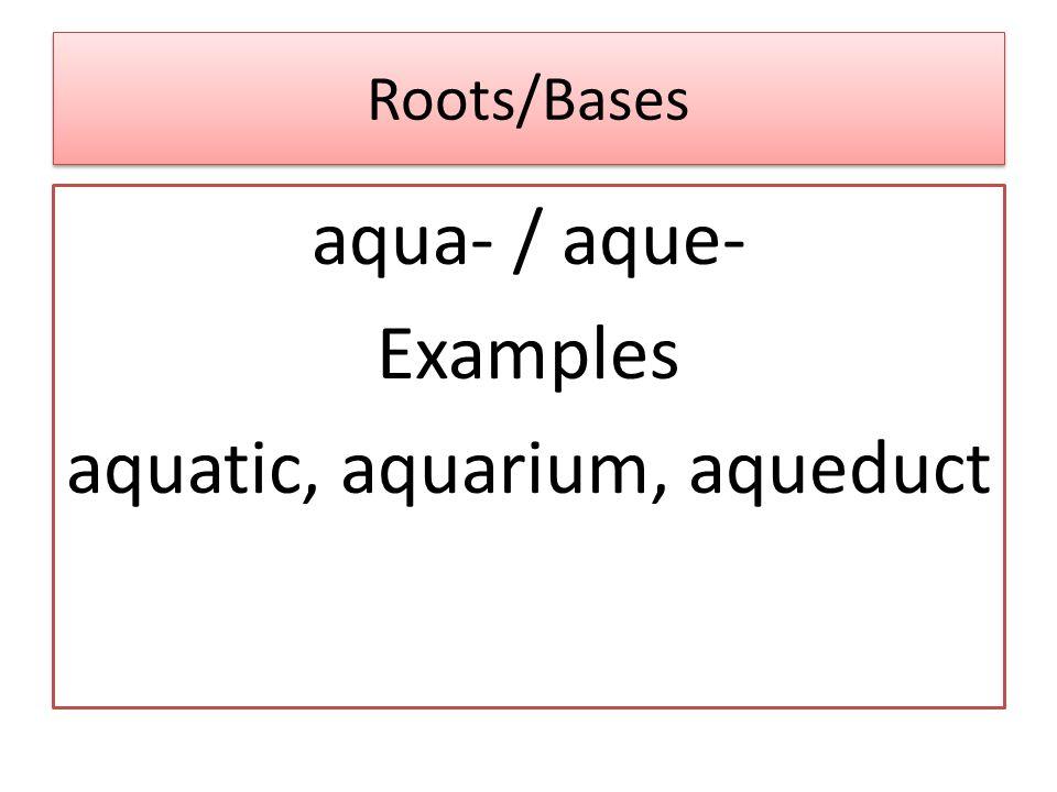 Roots/Bases aqua- / aque- Examples aquatic, aquarium, aqueduct