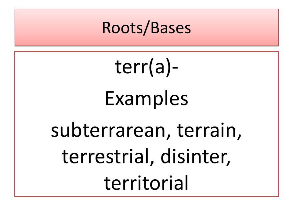 Roots/Bases terr(a)- Examples subterrarean, terrain, terrestrial, disinter, territorial