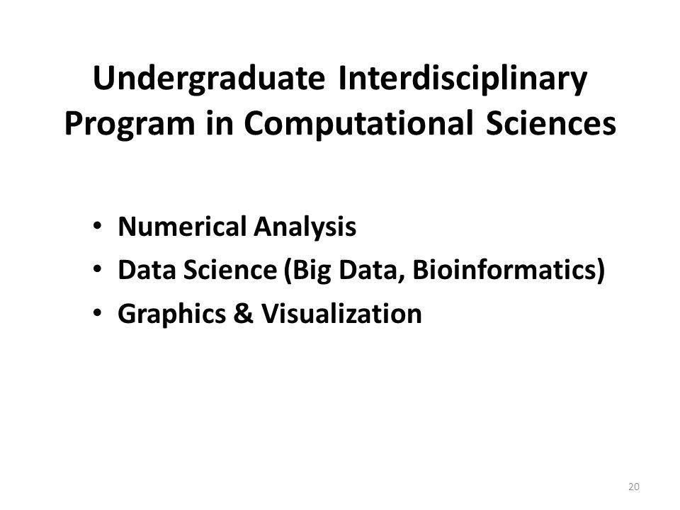 Undergraduate Interdisciplinary Program in Computational Sciences Numerical Analysis Data Science (Big Data, Bioinformatics) Graphics & Visualization