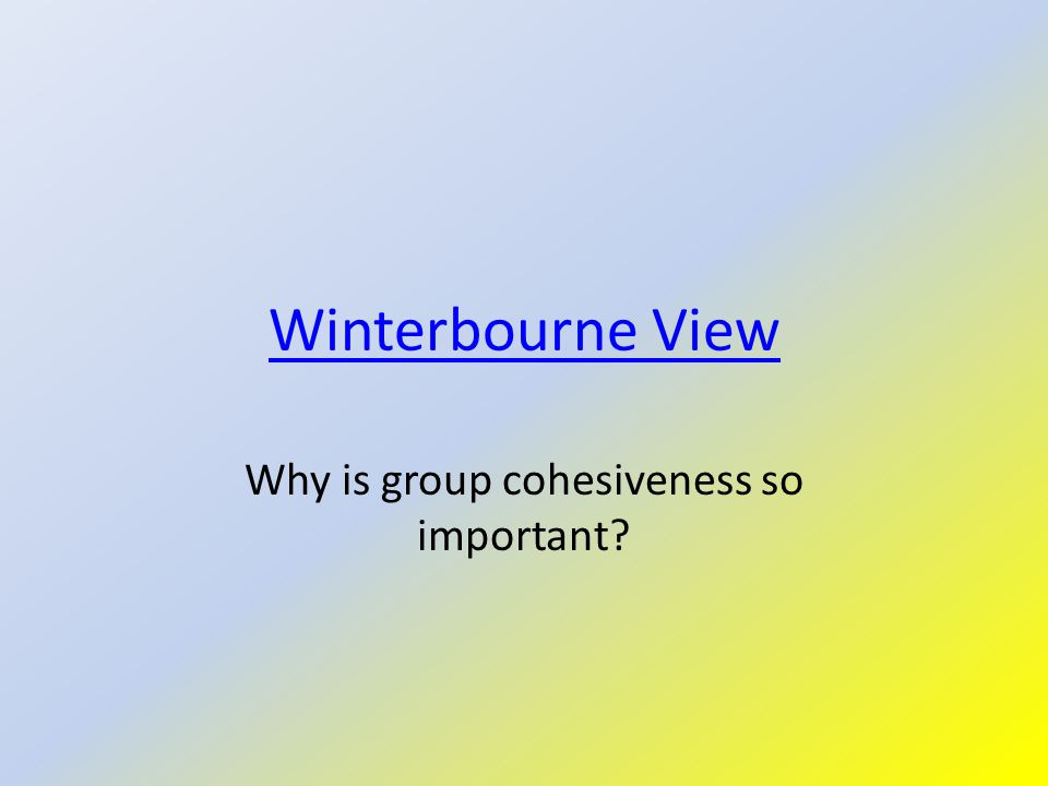 Winterbourne View Why is group cohesiveness so important