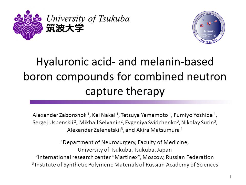 Presentation outline Hyaluronic acid as a boron carrier Solid state synthesis of HA compounds Boron-hyaluronic acid complex formation analysis Cytotoxicity in tumor and normal cells Accumulation in subcutaneous rat tumor model Gold nanoparticles for combined radiotherapy Photon capture therapy concept Glioma cells radiosensitization with gold nanoparticles Hyaluronic acid- and melanin-based gold nanoparticles Cytotoxicity, X-ray contrasting and tumor radiosensitization 2