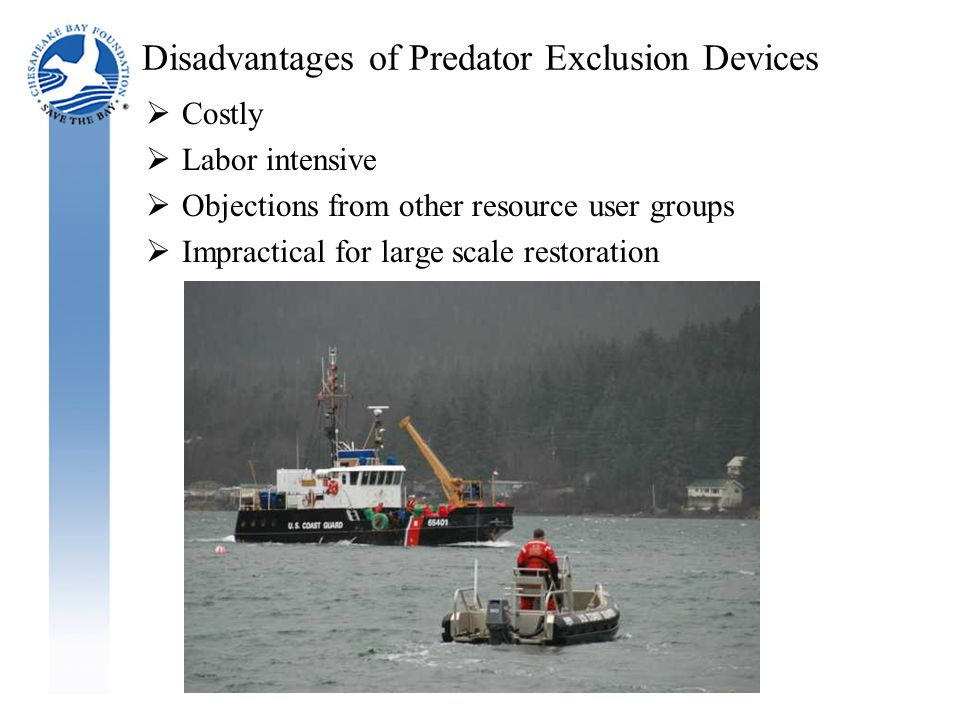 Disadvantages of Predator Exclusion Devices  Costly  Labor intensive  Objections from other resource user groups  Impractical for large scale restoration