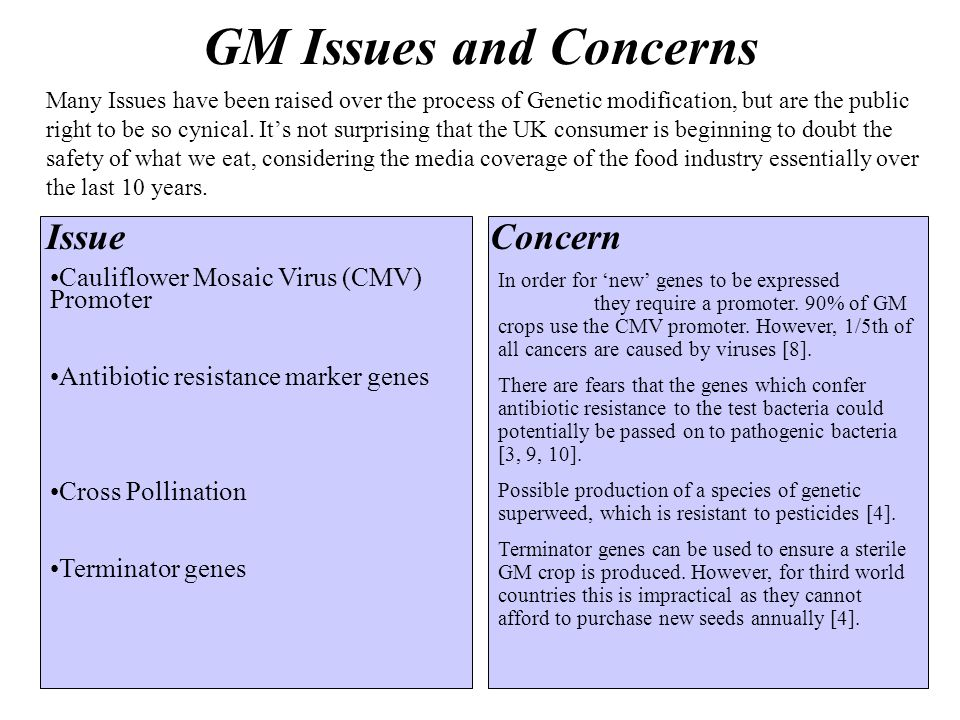 GM Issues and Concerns IssueConcern Many Issues have been raised over the process of Genetic modification, but are the public right to be so cynical.