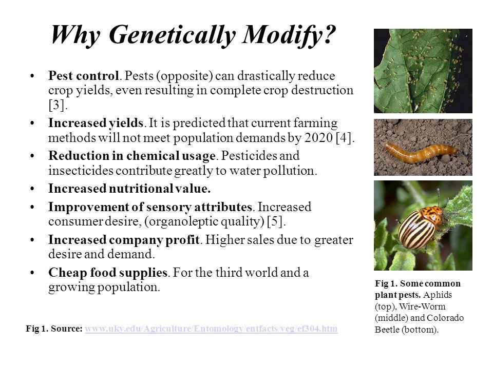 Why Genetically Modify. Pest control.
