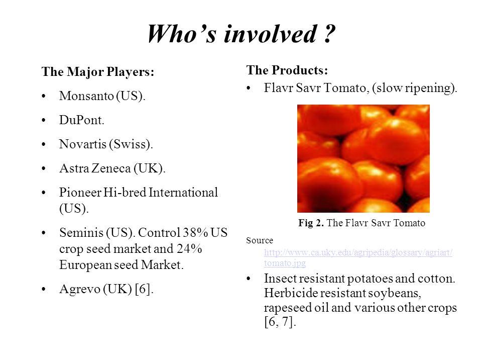 Who's involved . The Major Players: Monsanto (US).